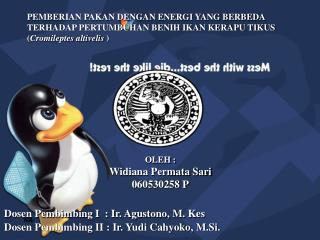 OLEH : Widiana Permata Sari 060530258 P Dosen Pembimbing I  : Ir. Agustono, M. Kes