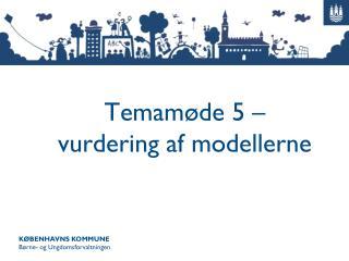 Temamøde 5 – vurdering af modellerne