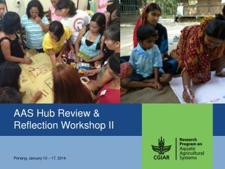 AAS Hub Review & Reflection Workshop II