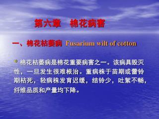 第六章 棉花病害 一、棉花枯萎病 Fusarium wilt of cotton