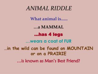 ANIMAL RIDDLE