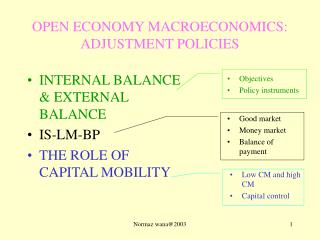 OPEN ECONOMY MACROECONOMICS: ADJUSTMENT POLICIES