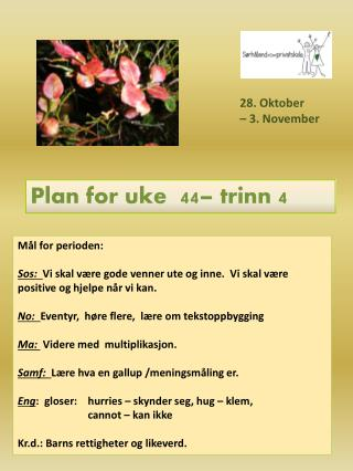 Plan for uke  44 – trinn  4