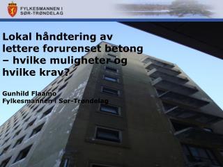 Lokal h�ndtering av lettere forurenset betong � hvilke muligheter og hvilke krav? Gunhild Flaamo