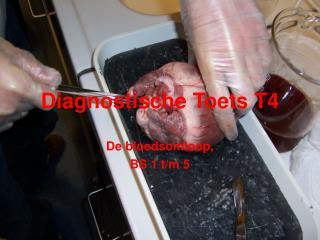 Diagnostische Toets T4