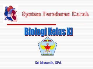 Biologi Kelas XI