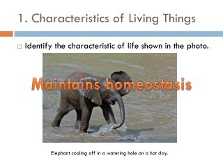 1. Characteristics of Living Things