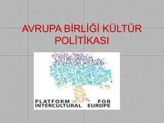 AVRUPA BİRLİĞİ KÜLTÜR POLİTİKASI
