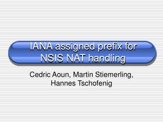 IANA assigned prefix for NSIS NAT handling