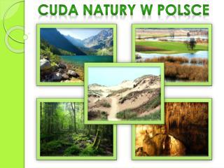 CUDA NATURY W POLSCE