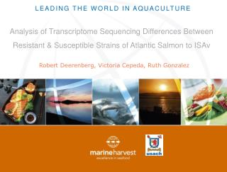 Leading the world in aquaculture