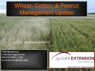Wheat, Cotton, & Peanut Management Update