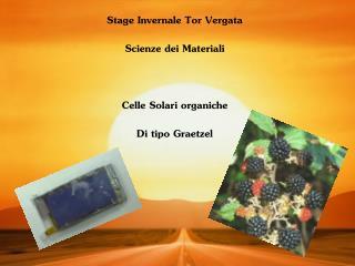 Stage Invernale Tor Vergata  Scienze dei Materiali  Celle Solari organiche Di tipo Graetzel