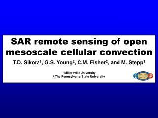 SAR remote sensing of open mesoscale cellular convection
