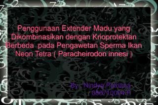 By : Nindya Putriana 060710024 P