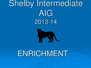 Shelby Intermediate AIG 2013-14