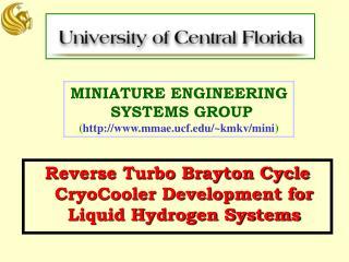 MINIATURE ENGINEERING  SYSTEMS GROUP ( mmae.ucf/~kmkv/mini )