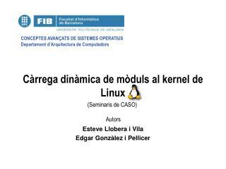 Càrrega dinàmica de mòduls al kernel de Linux