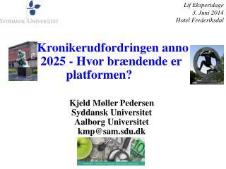 Kjeld Møller Pedersen Syddansk Universitet Aalborg Universitet kmp@sam.sdu.dk