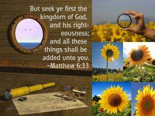 Following the Son,  Your Savior!