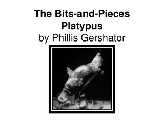 The Bits-and-Pieces Platypus by Phillis Gershator