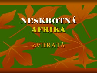 NESKROTNÁ AFRIKA