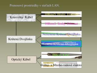 Prenosové prostriedky v sieťach LAN.