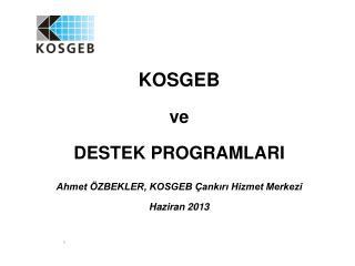 KOSGEB ve DESTEK PROGRAMLARI Ahmet �ZBEKLER, KOSGEB �ank?r? Hizmet Merkezi Haziran 2013