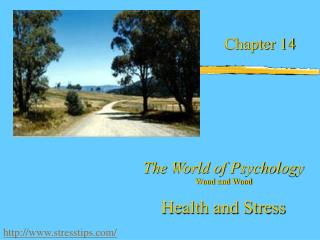 The World of Psychology Wood and Wood  Health and Stress