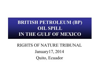 BRITISH PETROLEUM (BP)  OIL SPILL IN THE GULF OF MEXICO