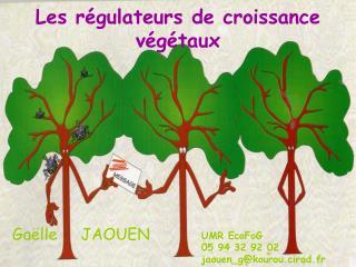 Les régulateurs de croissance végétaux