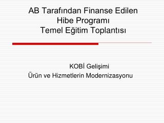 AB Tarafından Finanse Edilen  Hibe Programı  Temel  Eğitim  Toplant ısı