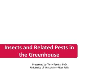 Insects and Related Pests in the Greenhouse