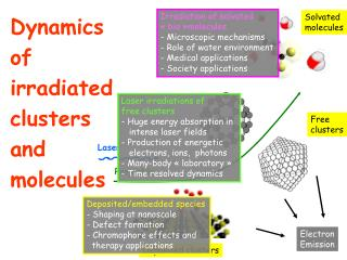 Dynamics   of  irradiated clusters  and  molecules