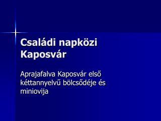 Családi napközi Kaposvár