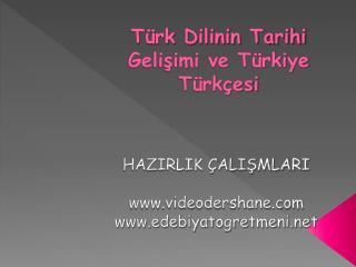 Türk Dilinin Tarihi Gelişimi ve Türkiye Türkçesi