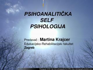 PSIHOANALITIČKA              SELF             PSIHOLOGIJA Predavač :  Martina Krajcer