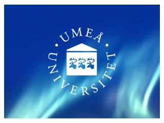 Ume� University Organisation