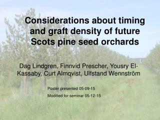 Considerations about timing and graft density of future Scots pine seed orchards