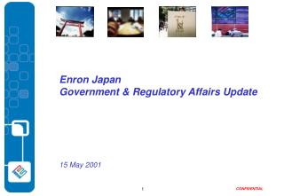 Enron Japan Government & Regulatory Affairs Update 15 May 2001