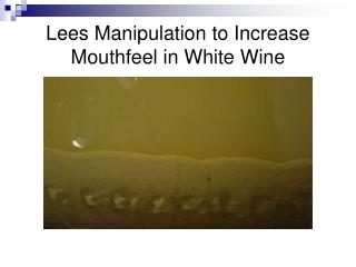 Lees Manipulation to Increase Mouthfeel in White Wine