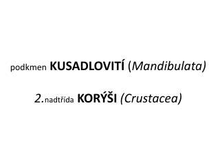 podkmen KUSADLOVITÍ  ( Mandibulata) 2. nadtřída KORÝŠI  (Crustacea)