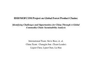 International Team: Steve Bass, et. al. China Team:  Changjin Sun  (Team Leader)