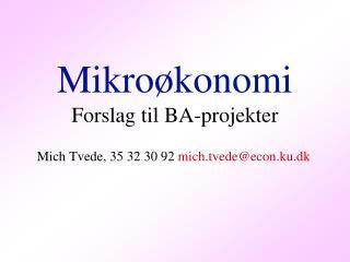 Mikroøkonomi Forslag til BA-projekter