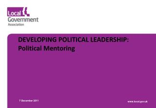 DEVELOPING POLITICAL LEADERSHIP: Political Mentoring