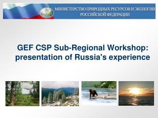 GEF CSP Sub-Regional Workshop: presentation of Russia's experience