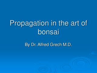 Propagation in the art of bonsai