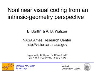 Nonlinear visual coding from an intrinsic-geometry perspective