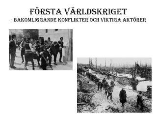 F�rsta v�rldskriget - Bakomliggande konflikter och viktiga akt�rer