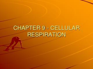 CHAPTER 9 - CELLULAR RESPIRATION